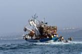 """Pêche : 96% des captures au Maroc sont """"durables"""""""