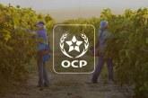 Bioline By Invivo et le groupe OCP signent un accord de coopération dans l'Agtech
