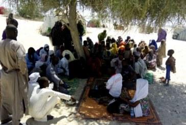 Le Niger adopte une loi unique en Afrique qui protège les populations déplacées