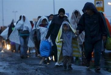 L'Algérie considère les migrants arabes comme « un danger pour la stabilité du pays »
