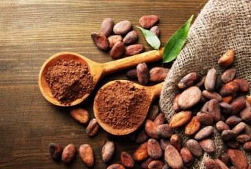 Le Ghana veut transformer au moins la moitié de sa production de cacao