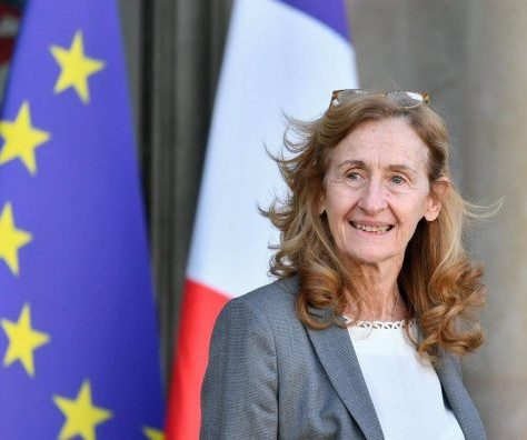 djihadistes français