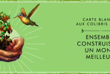 Carte blanche au Colibris Maroc à l'Institut français de Casablanca le samedi 23 février