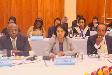 """L'initiative de la Paix et la Sécurité lancée à Pékin, """"un jalon supplémentaire"""" de la coopération sino-africaine"""