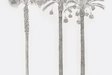 Marrakech : Exposition de Charlotte Royle à Galerie Siniya28