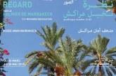 Exposition Photos « Regard sur le palmier de Marrakech »