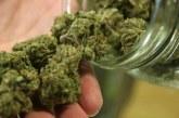 USA: vers la légalisation du cannabis récréatif dans le New Jersey
