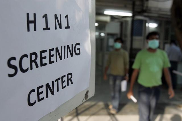 Inde: 14.803 cas de grippe porcine confirmés dans le nord du pays