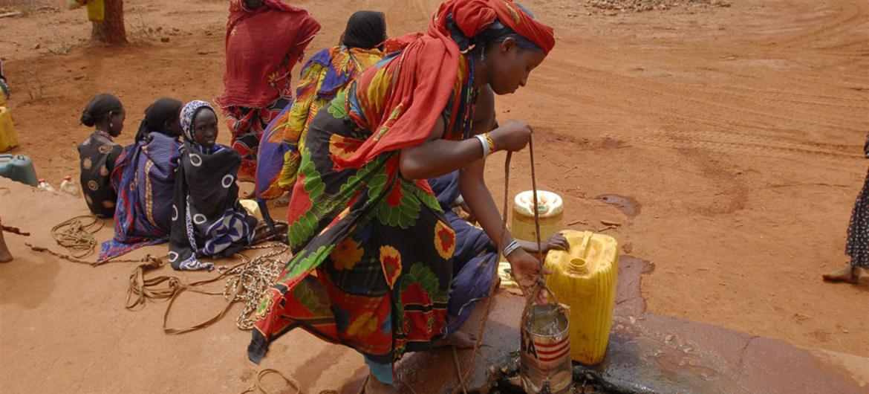 La sécheresse menace la vie de près d'un million de Kényans