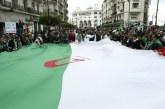 Algérie : La purge des oligarques ne suffit pas