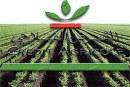 GCAM : Se réinventer tout en relevant les défis du Maroc rural