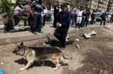 Sept morts dans un attentat à la bombe en Egypte