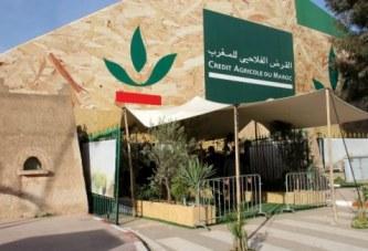 Agriculture: GCAM facilite l'accès au financement de la mécanisation