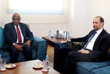 """Le retour du Maroc au sein de l'UA apporte """"un grand plus"""" à l'organisation panafricaine"""