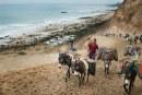 Pillage de sable au Maroc : l'ONU s'inquiète