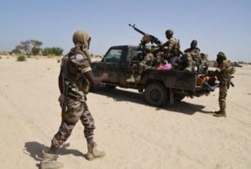 Attaque terroriste au Niger: 28 soldats tués