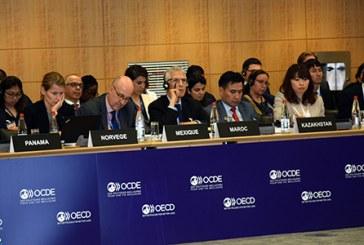 OCDE : Le Maroc prône une approche africaine inclusive et intégrée