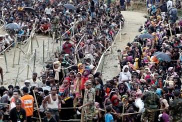 Plus de 250.000 réfugiés rohingyas ont reçu une pièce d'identité de l'ONU
