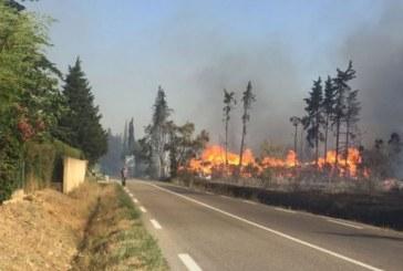 Canicule au Vietnam : des forêts au centre du pays ravagés par des incendies