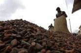 Le Ghana et la Côte d'Ivoire cesseront la vente du cacao