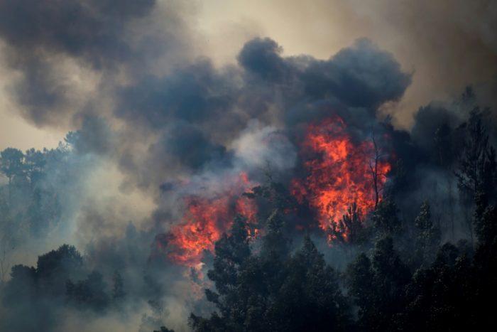 Incendie de forêt en Catalogne : plus de 5.500 ha ravagés
