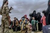 """12 enfants orphelins de familles """"jihadistes"""" remis par les Kurdes à la France"""