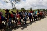 Le Mexique bloque les comptes bancaires de trafiquants de migrants