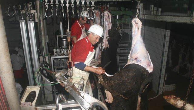 Abattoirspublics: les vétérinaires tirent la sonnette d'alarme