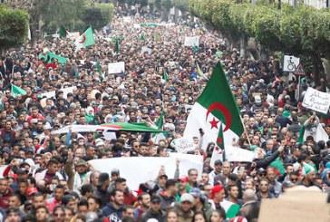 A Alger, les manifestants refusent massivement l'appel au dialogue du pouvoir
