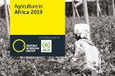 OBG analyse le secteur agricole africain