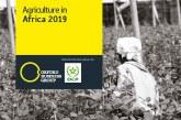 OBG analyse le secteur agricole africain