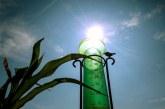 Canicule, sécheresse, restrictions d'eau…la France vit un été pas comme les autres!!