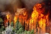 Le sud de la Russie touché par 37 incendies de forêt