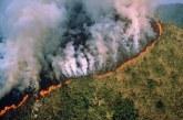 Brésil : De violents incendies ravagent l'Amazonie