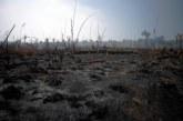 Incendies en Amazonie: doutes sur l'efficacité de l'interdiction des brûlis