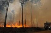 Russie: 33,9 millions d'euros de dommages causés par les feux de forêt