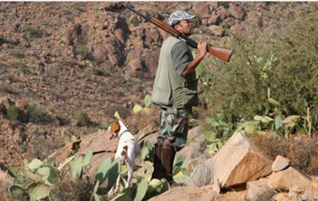 chasse illégale