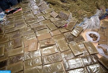 Tanger: enquête pour déterminer les circonstances du trafic de 505 kg de chira