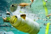 L'OMS appelle à un examen approfondi de l'impact des microplastiques sur la santé