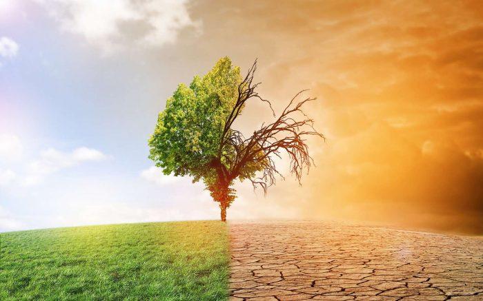 changements climatiques