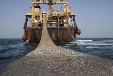 Genève : Séminaire sur la réglementation de la pêche industrielle à grande échelle à l'initiative du Maroc