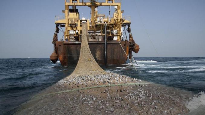 Séminaire sur la réglementation de la pêche industrielle