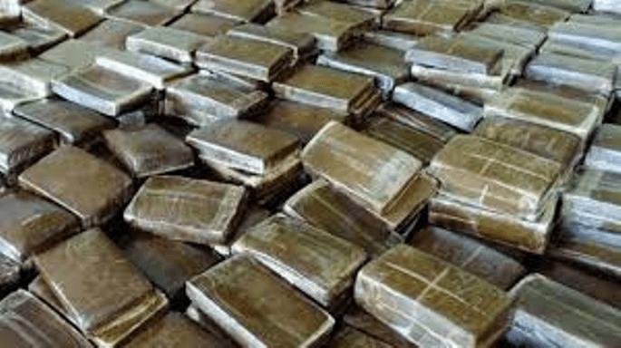 Agadir: saisie de 2,230 tonnes de Chira