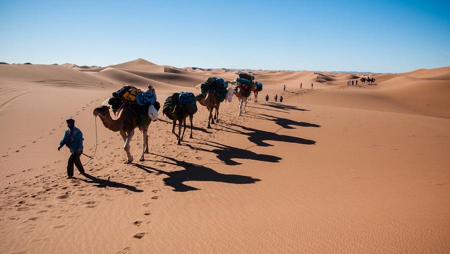 """Résultat de recherche d'images pour """"Caravane Desert"""""""