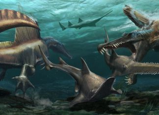 dinosaure aquatique