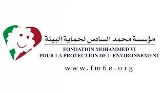 Fondation Mohammed VI