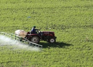 saison agricole