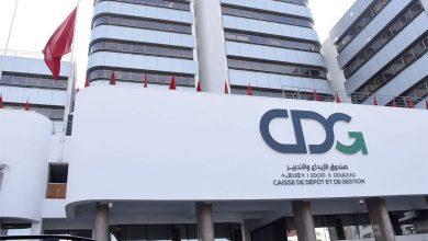 CDG Capital Insight